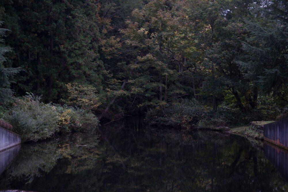 横内川の水源地を視察してきました。